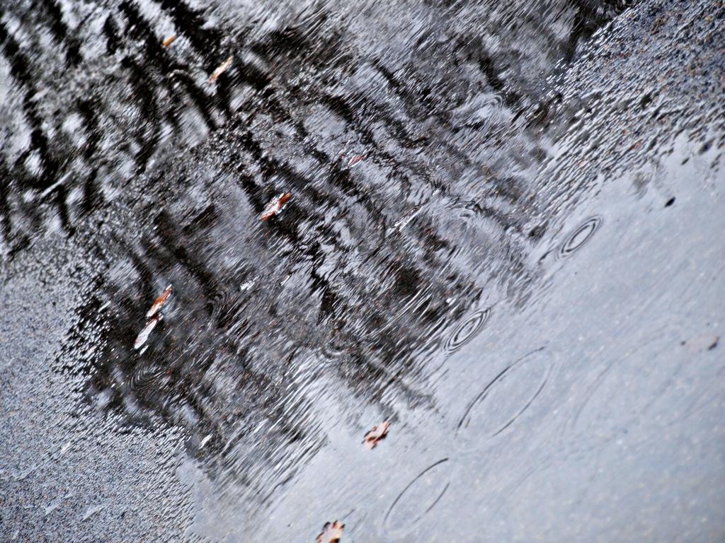Rain, rain, rain. 16.02.14